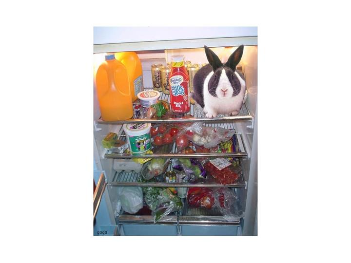 Refrigerator Cleaning 1