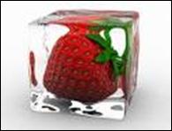 Freezer storage guidelines 4